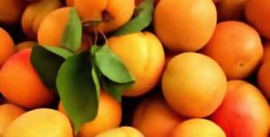 Пирог с абрикосами, персиками и сливами