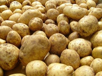 Почему нельзя есть картошку